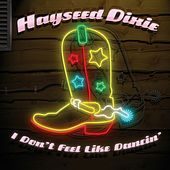 I Don't Feel Like Dancing by Hayseed Dixie