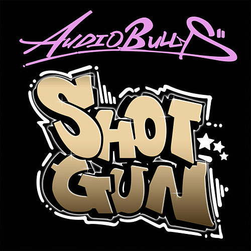 Shotgun (Basher Remix) von Audio Bullys