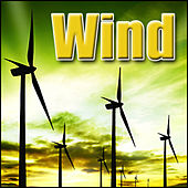 Wind: Sound Effects by Sound Effects Library