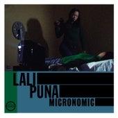 Micronomic by Lali Puna
