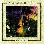 Bandole by Shastro