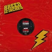 Down / Electric Rain by Gemini