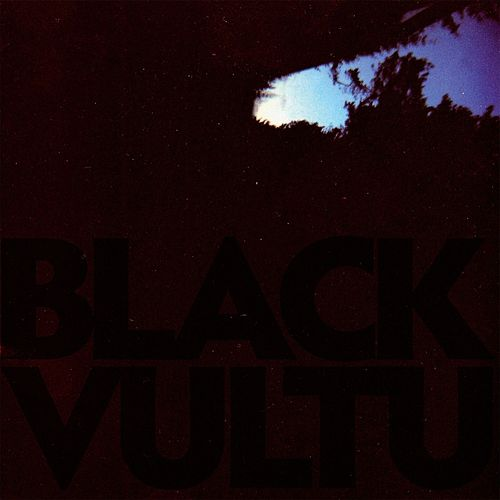 Black Vultures by Daniel Norgren