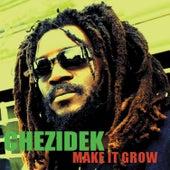 Make It Grow by Chezidek