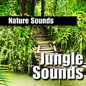 Nature Sounds: Jungle Sounds by Nature Sounds BLOCKED