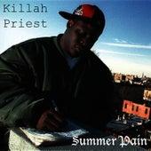 Summer Pain von Killah Priest