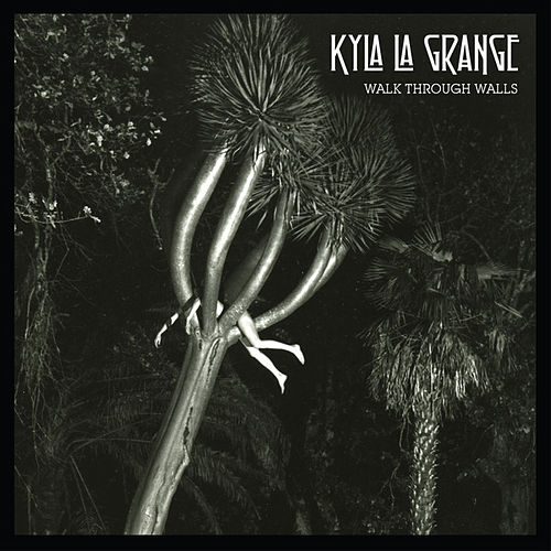 Walk Through Walls by Kyla La Grange