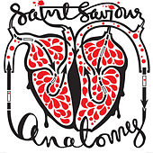 Anatomy by SaintSaviour