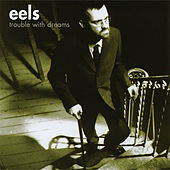 Trouble With Dreams by Eels