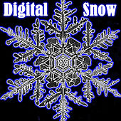 Digital Snow von Various Artists