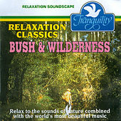 Bush & Wilderness by London Symphony Orchestra