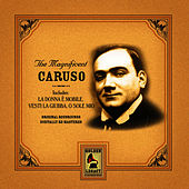 Magnificent Caruso by Enrico Caruso