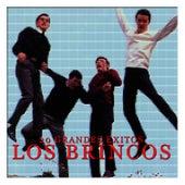 20 Grandes Éxitos los Brincos by Los Brincos
