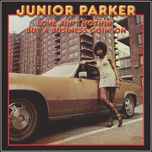 Love Ain't Nothin' But A Business Goin' On by Junior Parker
