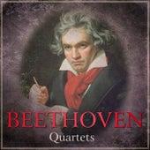 Beethoven - Quartets by Fine Arts Quartet