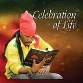 Celebration of Life by Turbulence