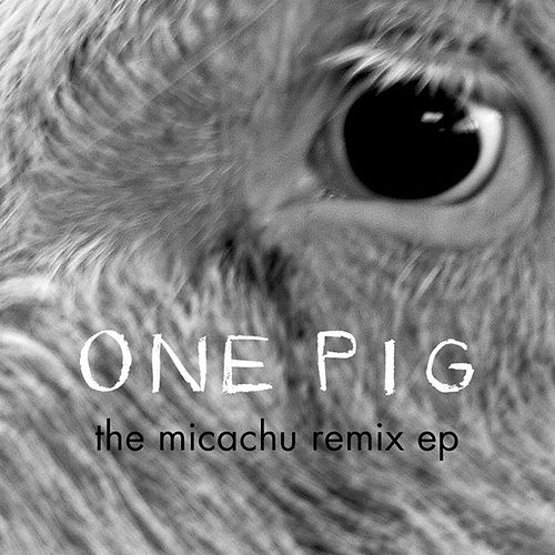 One Pig (Micachu Remix EP) by Matthew Herbert