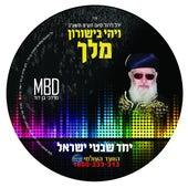 Yachad by Mordechai Ben David