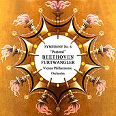 Beethoven Symphony No. 6 by Vienna Philharmonic Orchestra