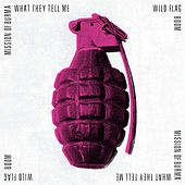 What They Tell Me / Boom by Various Artists