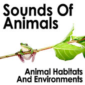 Sounds Of Animals: Animal Habitats And Environments by Dr. Sound Effects SPAM