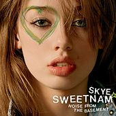 Noise From The Basement by Skye Sweetnam