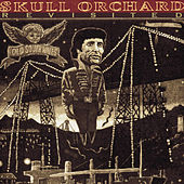 Skull Orchard Revisited by Jon Langford