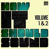 How It Should Sound, Vol. 1 & 2 by Damu The Fudgemunk
