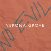 No Evil by Verona Grove