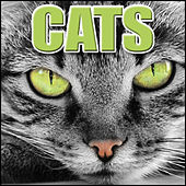Cats: Sound Effects by Sound Effects Library