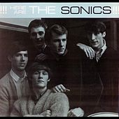 Have Love Will Travel by The Sonics