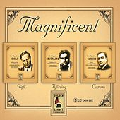 Magnificent boxset by Various Artists
