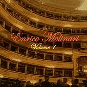 Volume 1 by Enrico Molinari