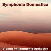 Symphonia Domestica by Vienna Philharmonic Orchestra