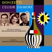 Donizetti L'Elisir D'Amore by Orchestra del Maggio Musicale Fiorentino