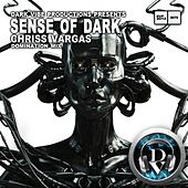 Sense of Dark (Domination Mix) by Chriss Vargas