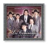 Tesoros De Coleccion: Puras Ranchesras by Los Caminantes