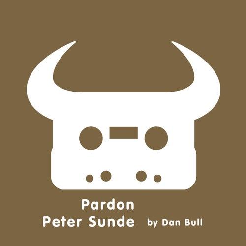 Pardon Peter Sunde by Dan Bull