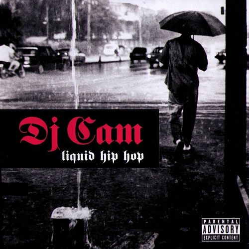 Liquid Hip Hop by DJ Cam
