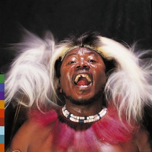 Chibite by Hukwe Zawose