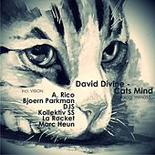 Cats Mind by David Divine