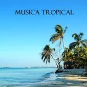 Musica Tropical (Fiesta Latina) by Musica Tropical Club