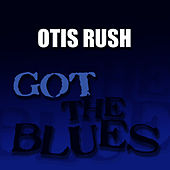 Got the Blues von Otis Rush