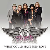 What Could Have Been Love by Aerosmith