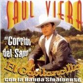 Corrido Del Sapo by Saul Viera