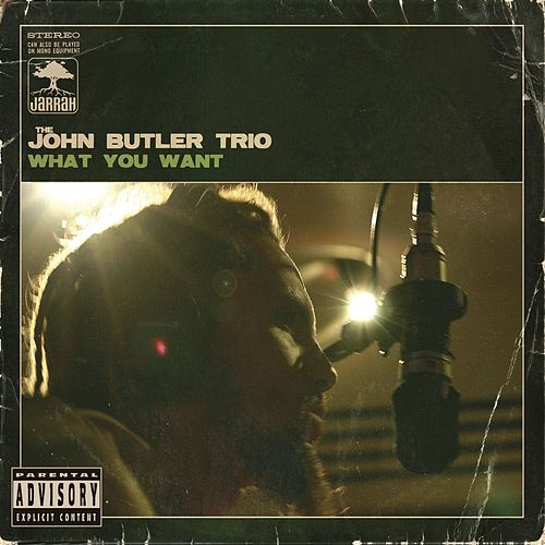 What You Want by The John Butler Trio