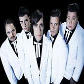 Genepool Convulsions by The Hives