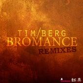 Bromance Remixes von Avicii