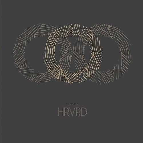 Cardboard Houses by Hrvrd