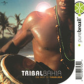 Pure Brazil: Tribal Bahia by Carlinhos Brown